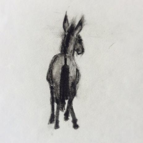 Little Mule Wales